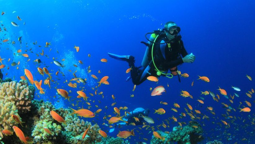 Diving - Injury prevention and safety tips